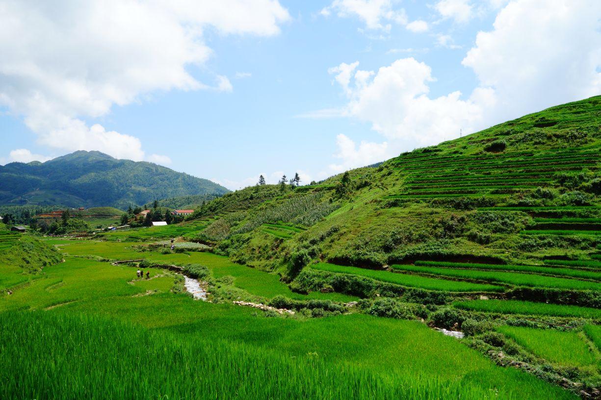Un séjour formidable au Vietnam grâce à eux