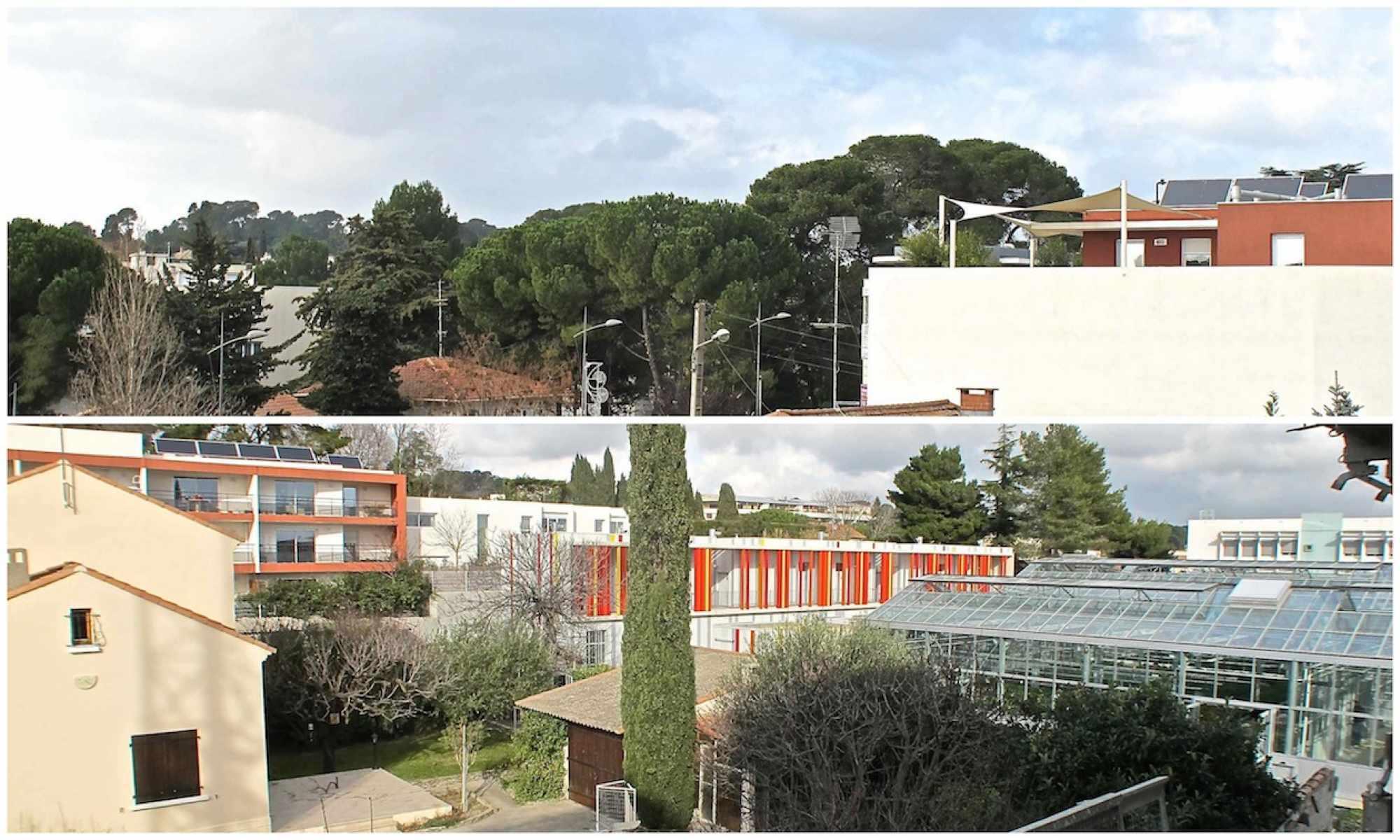 Promoteur immobilier Montpellier : faites le meilleur placement